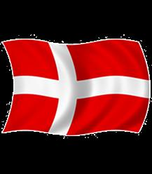 http://www.handyudlejning.dk/images/produktbilleder/Festtilbehoer/Flag/dannebrog_flag-t.png